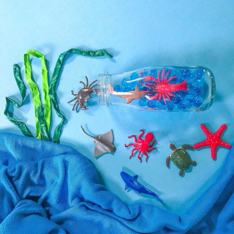 Baby Shark Workshop Aquarium