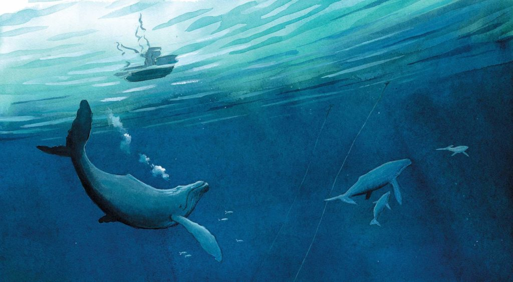 Books about Whales The Fisherman and The Whale by Jessica Lanan Page